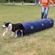 Dog Activity Tunnel Agility