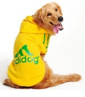 Sweet Adidog Grand chien Jaune