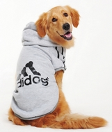 Sweet Adidog Grand chien Gris