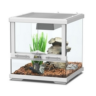 TERRARIUM SMART LINE - BLANC 30 cm version basse