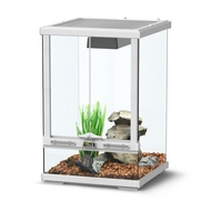 TERRARIUM SMART LINE - BLANC 30 cm version haute