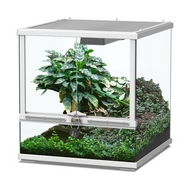 TERRARIUM SMART LINE - BLANC 45 cm version basse